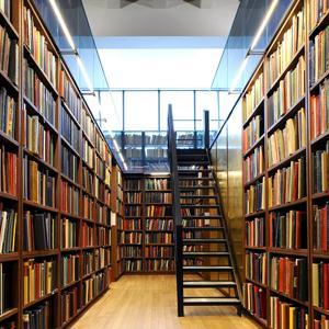 Библиотеки Пскова